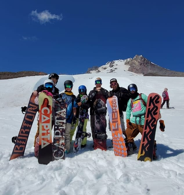 Timberline in Summer